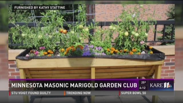 Grow with KARE: MN Masonic Marigold Garden Club