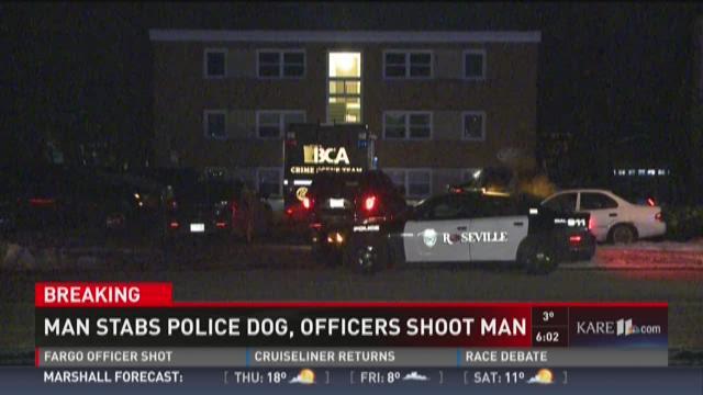 Man fatally shot after stabbing K9