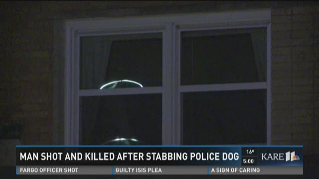 Man fatally shot after stabbing K9
