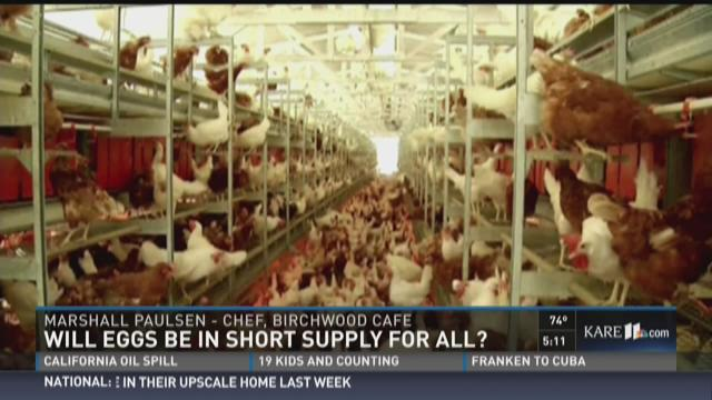 Will eggs be in short supply for all?