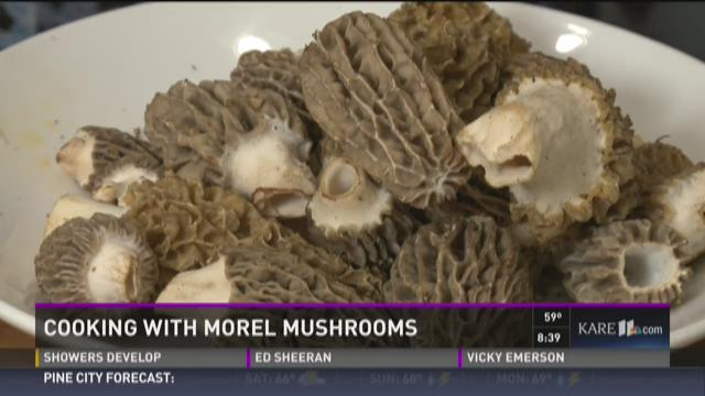 Cooking with morel mushrooms for Morel mushroom recipes food network