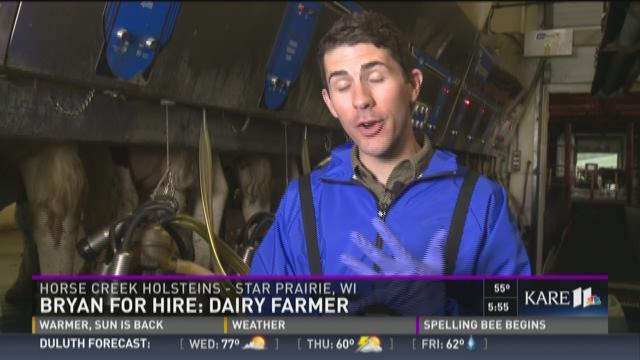 Bryan for Hire- Dairy Farmer 1