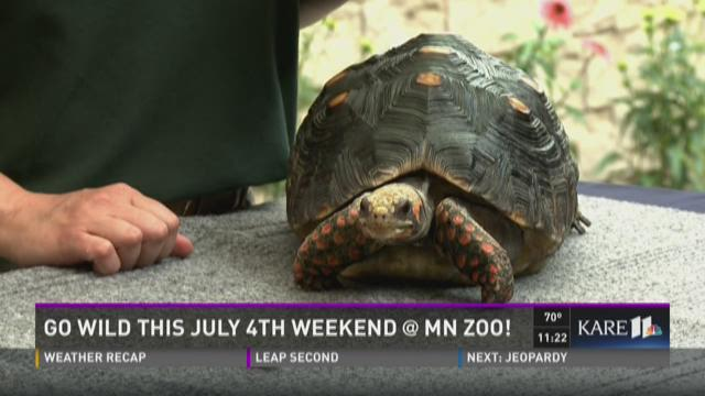 Military Family Week at the Minnesota Zoo