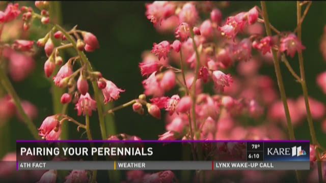 Grow with KARE:  Perennial pairings