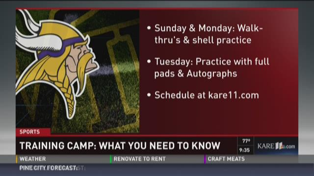 Vikings report to training camp