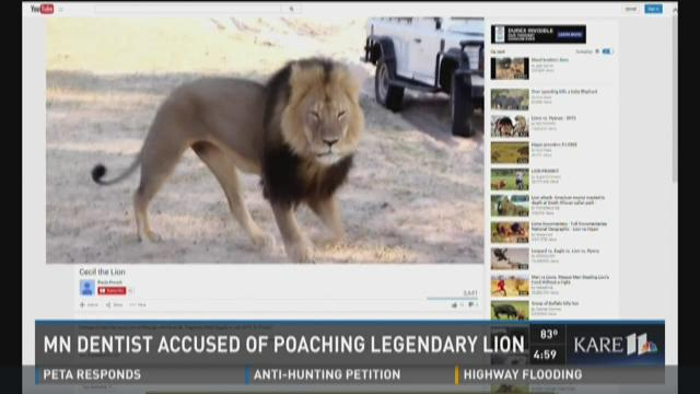 Minn. dentist accused of poaching lion