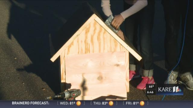 Bryan and Laura build a dog house for a cause