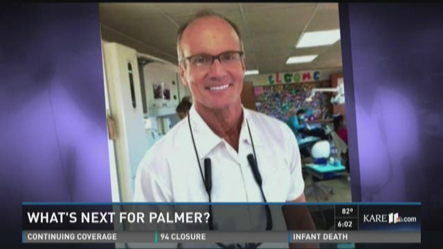 What's next for Walter Palmer?