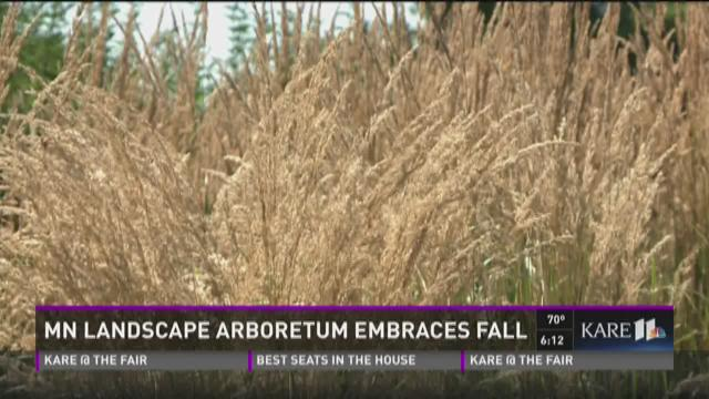 MN Landscape Arboretum embraces fall