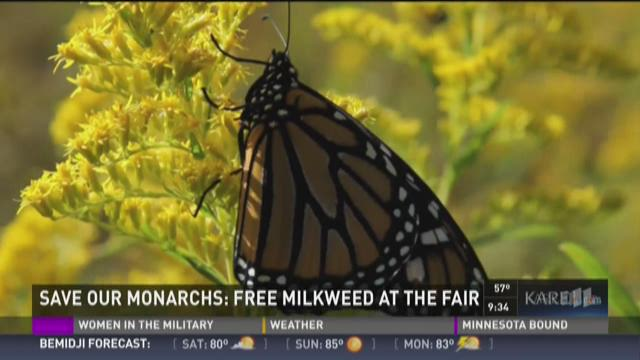 Save our Monarchs Foundation is on a mission