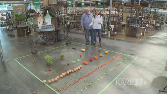 Grow With Kare Planning Your Garden Layout Kare11 Com